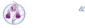 Women's Birth & Wellness Center